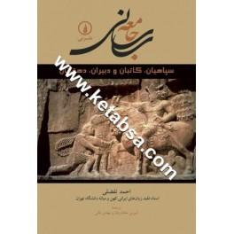 جامعه ساسانی (نی)